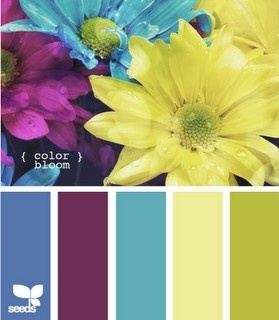 color inspiration - replace purple with cherry red or orange and that is the palette for the public areas