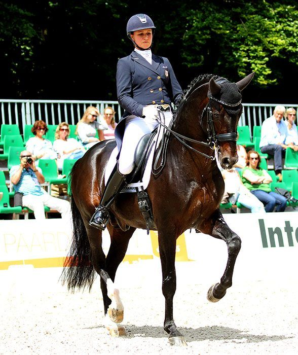 USA Team for CDIO5* Nations Cup at Aachen – Dressage-News