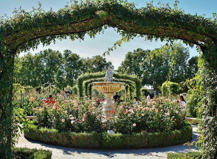 Rosaleda del parque del Retiro en Madrid