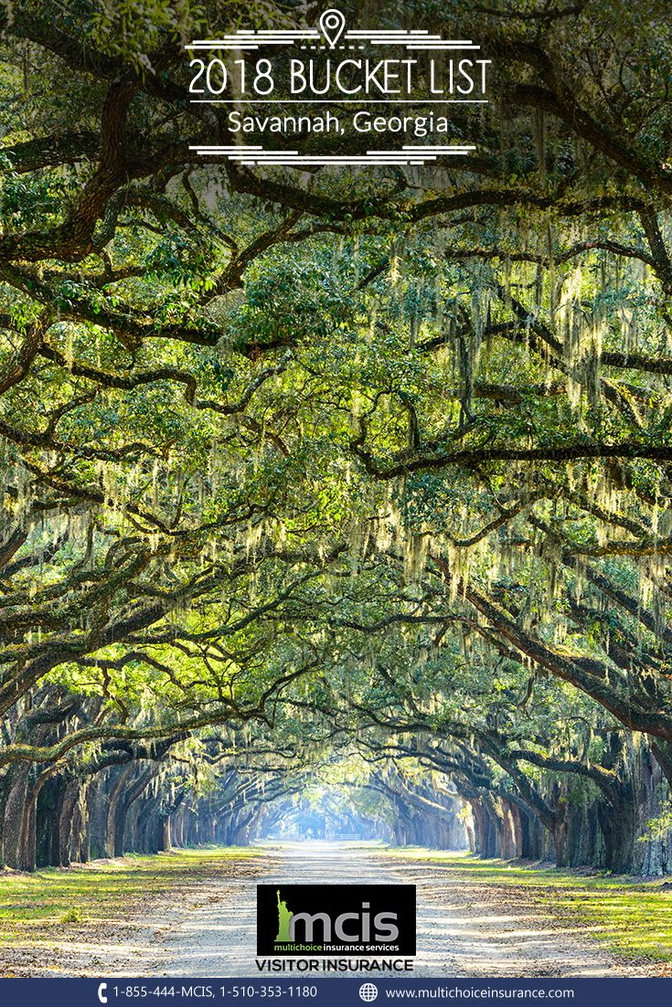 The Forest City Commonly Known For Its Arching Live Oaks Swathed