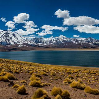 Passeios no Atacama: Lagunas Altiplânicas e Salar de Atacama