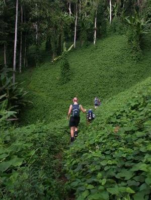 Walk the Kokoda Trail, Papua New Guinea