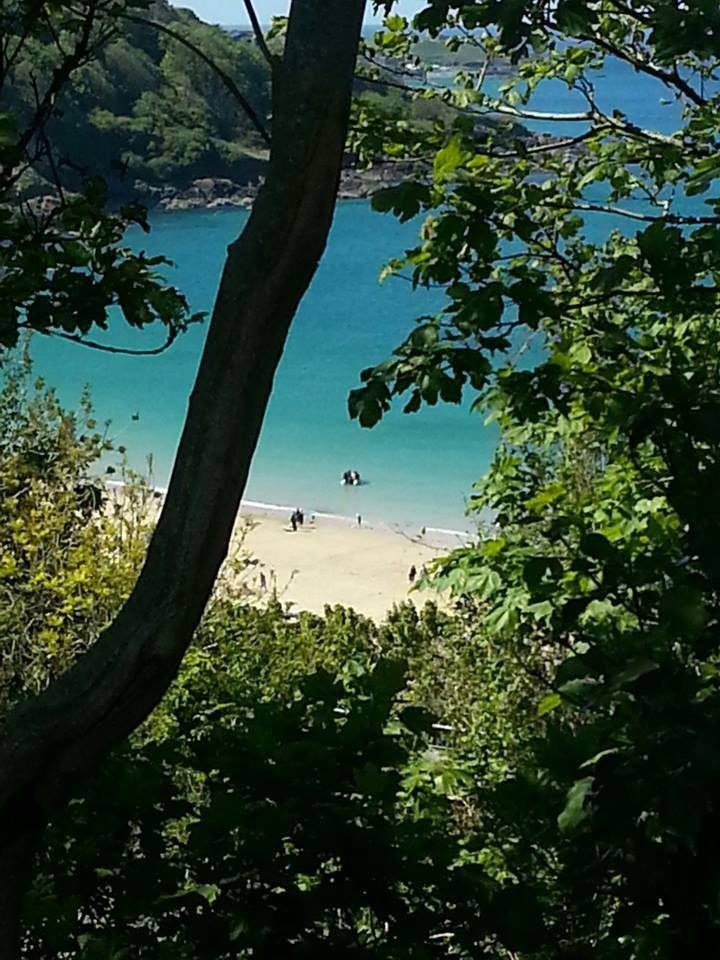 Beautiful shot of Carbis Bay through the trees. #beach #sea