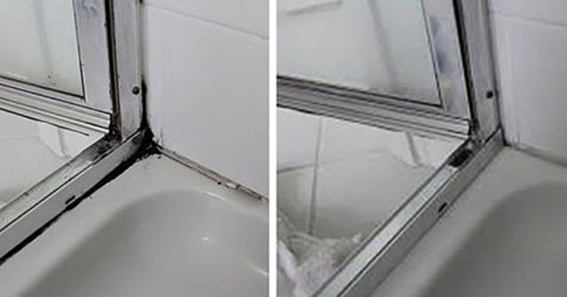 Do you want to rid yourself of mold for good without using chemical products? This could be just what you need. Mold is a type of fungi that can be found in the air as well as everywhere else. Mold breaks down dead materials and can usually be found on rotting food or plants. Moisture...