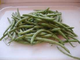 Good site for Freezing Green Beans among other things. Next year at this time I will be knee deep in home grown veggies!!!