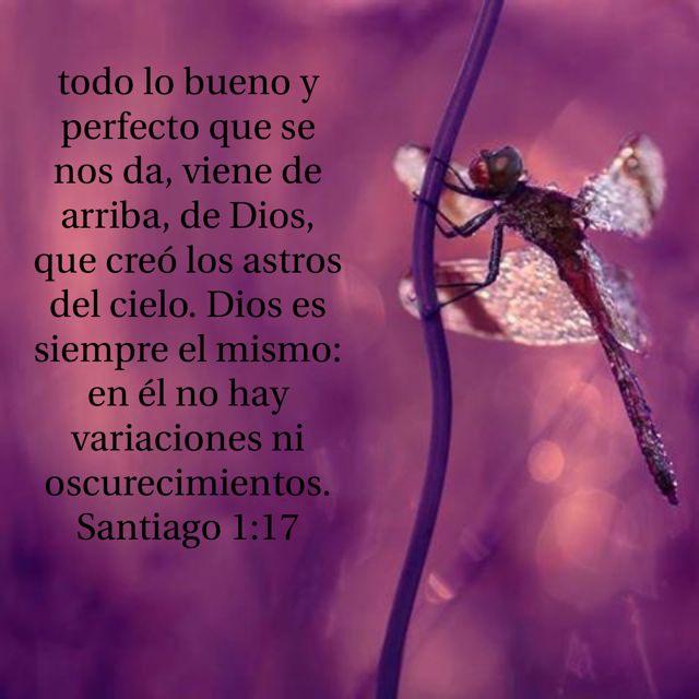 «Toda buena dádiva y todo don perfecto descienden de lo alto, donde está el Padre que creó las lumbreras celestes, y que no cambia como los astros ni se mueve como las sombras.» Santiago 1:17 NVI
