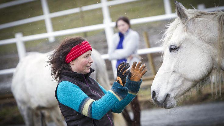 KOMMUNISERER MED HESTEN: Psykolog Anita Veimo dirigerer hun hesten sin rundt bare med kroppsspråk, berøring, lavmælt snakk og ansiktsuttrykk. Veimo setter seg på huk og vifter hesten til og fra seg med lette bevegelser med hendene. 11 år gamle El-Key oppfører seg nesten mer som en lydig hund enn som en stor hest der den tripper rundt henne. De stopper ofte og koser med hverandre. Foto: OLE MORTEN MELGÅRD/DAGBLADET