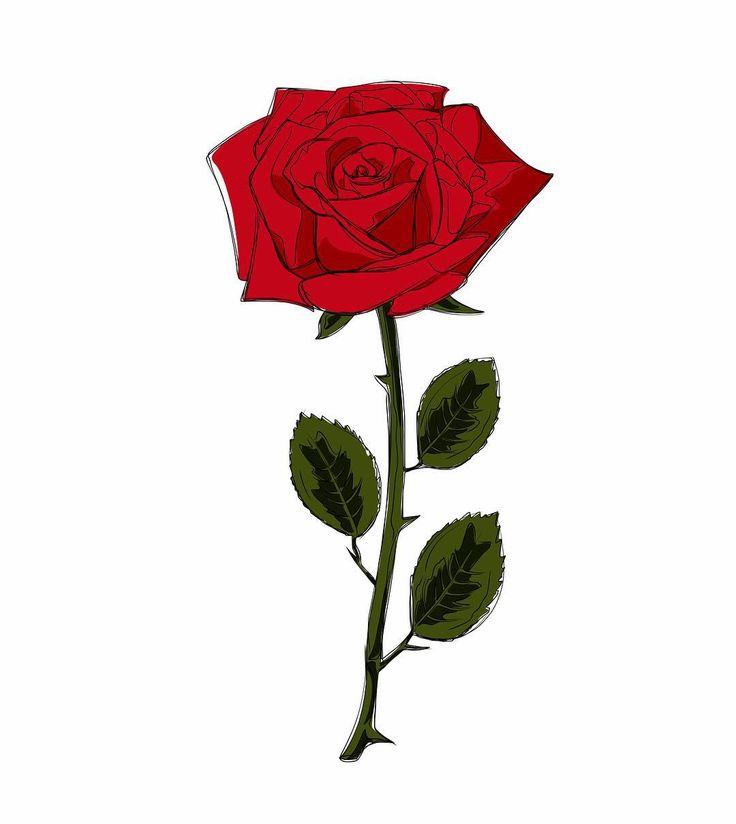 8 Mart dünya kadınlar gününüz kutlu olsun #8mart #8martdünyakadınlargünü #kutluolsun #happywomansday #8march