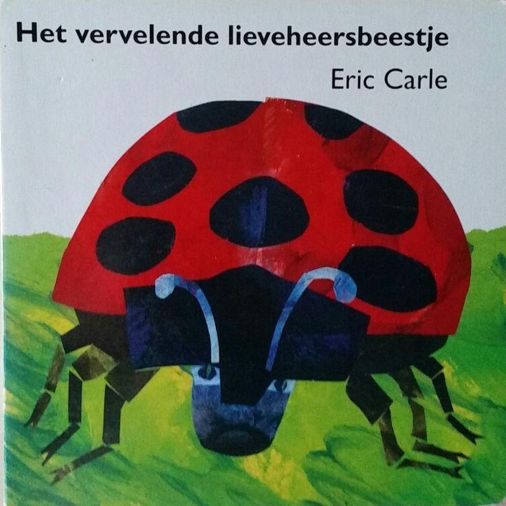Prentenboek Het vervelende lieveheersbeestje