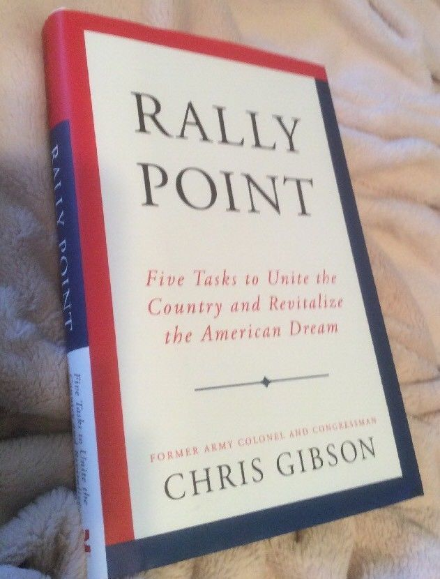 Rally Point : Five Tasks to Unite the Country and Revitalize the American Dream… | Books, Other Books | eBay!