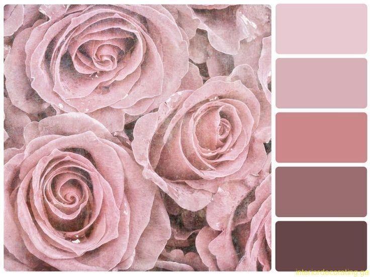 процеживаем цвет увядшей розы фото с чем сочетается вся