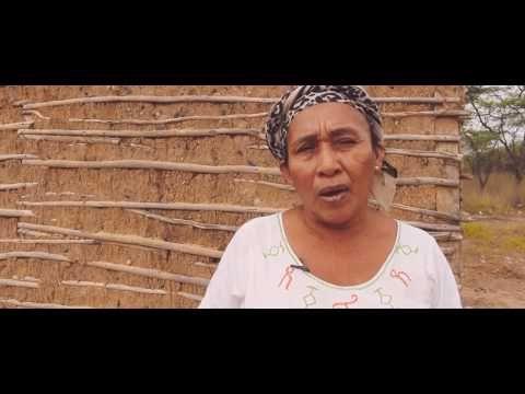 Entre Notas Rosa Multimedia: WATTA KAII, iniciativa ganadora del Premio Transfo...