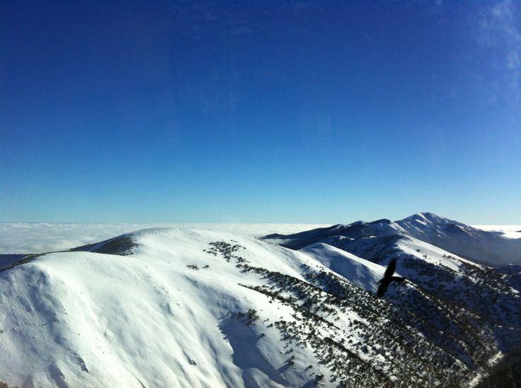 Snowy Mountains - Mt Hotham, Victoria