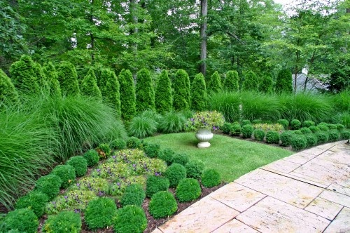Landscaping with small bushes ornamental grasses for Best tall grasses for privacy