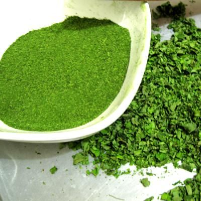 Natural Cures Not Medicine: Health Benefits Of Moringa Leaves