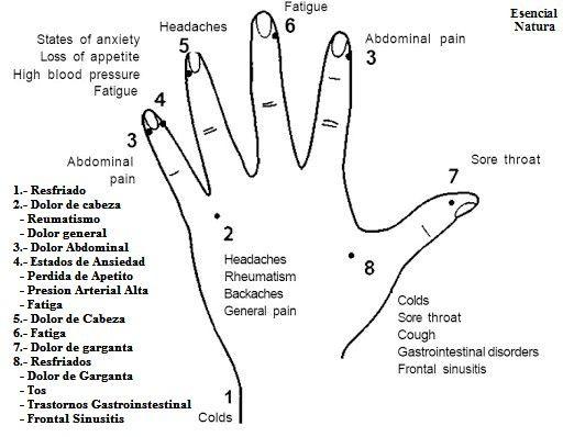 Cómo dar masajes a sus dedos para deshacerse de frío, dolor de garganta, dolor de cabeza y aliviar dolor senos paranasales