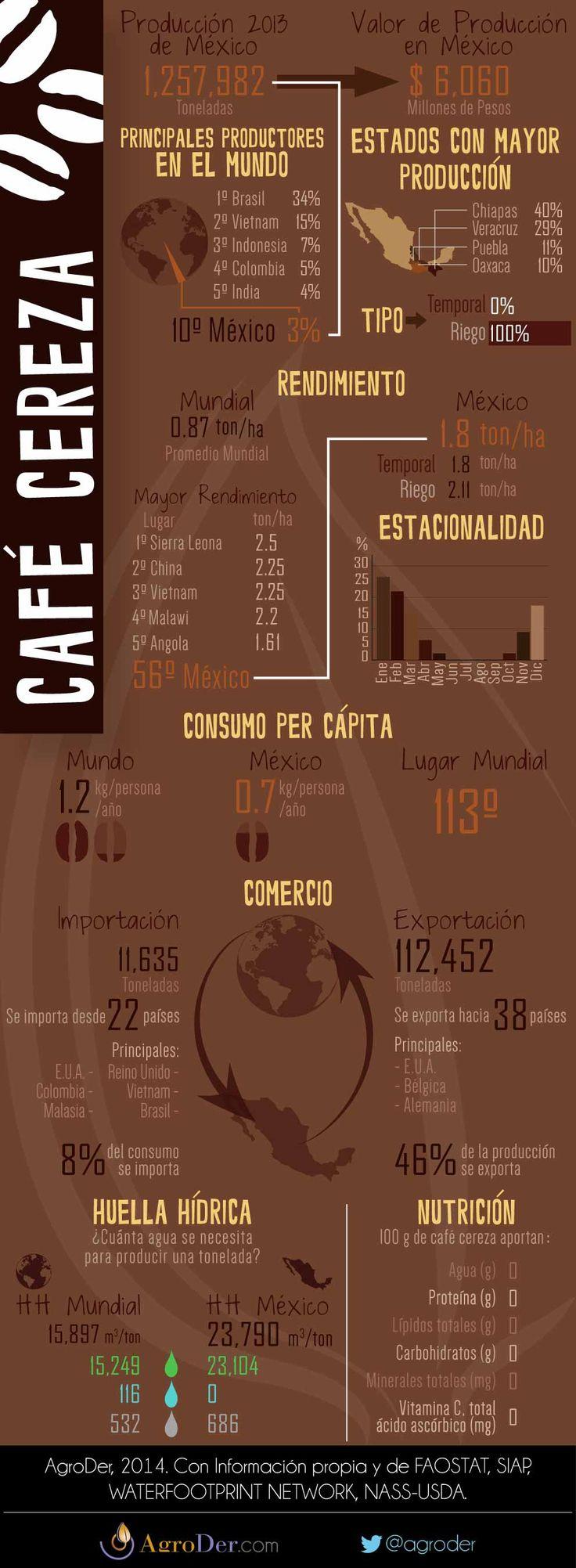 Infografía - Café en México, 2013.