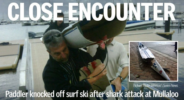 Good pics. And story on Perth Shark attack. #perthnews