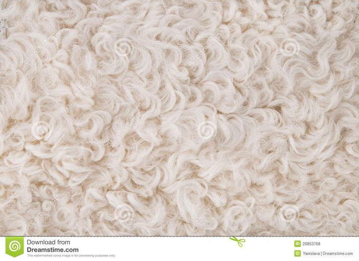 white carpet background. white fur texture background - download from over 36 million high quality stock photos, images carpet