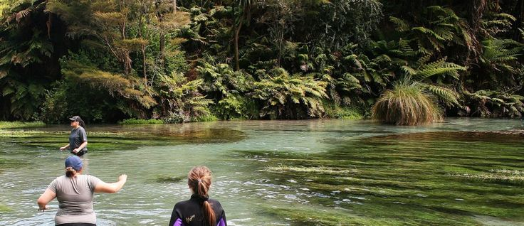 Dame Anne Salmond: A new start for NZ