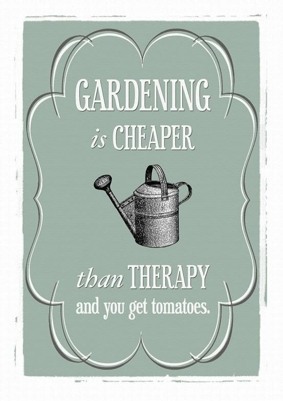 Gardening is cheaper than therapy & you get tomatoes ...haha L<3VE it!!