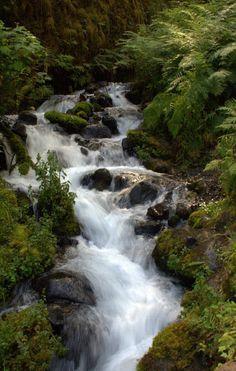 Wahkeena Trail, Portland, Oregon.