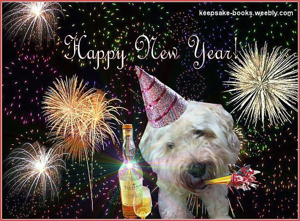 Talisker (Tali) the Wheaten Terrier with her favourite beverage wishing everyone a happy new year.