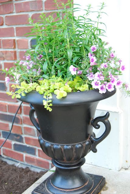 Evolution Of Style: Container Gardening For Dummies