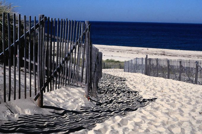 Cape Cod, favorite childhood vacation spot.