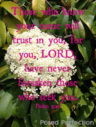 Posed Perfection: Food for the Soul ~ Psalm 9:10