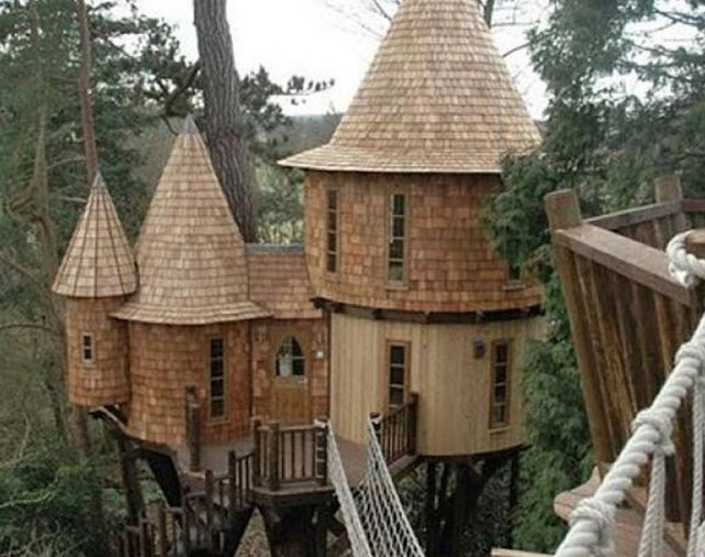 Treehouse CastleTrees Castles, Favorite Places, Dreams, Amazing Trees, Tree Houses, Treehouse, Castles Trees, Trees House, Kids