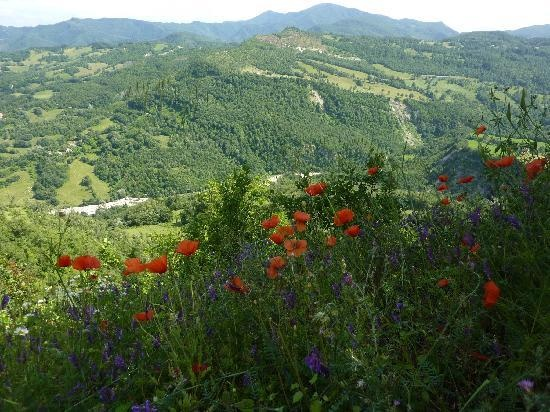 Badia Tedalda, Italy