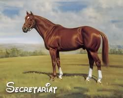 Great Race Horses jockeys | Secretariat is credited with being the fastest horse that ever lived.