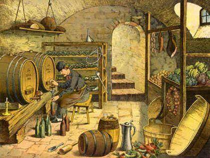 Die Einführung der ostamerikanischen Wurzellaus, der Reblaus, bedrohte zwischen 1870 und 1900 weltweit die Weinbauregionen und zerstörte nahezu überall Weinberge, in denen V. vinifera angebaut wurde, vor allem in Europa und Teilen Australiens und Kaliforniens. Um diesen Parasiten zu bekämpfen, werden V. vinifera (freistehende Triebe einschließlich Knospen)) wurden auf Arten aus den östlichen Vereinigten Staaten veredelt, die fast vollständig resistent gegen Reblaus waren.
