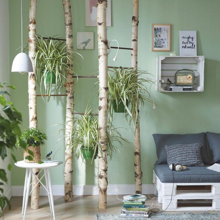 Zimmerpflanze Birkenstamm Deko Wohnzimmer Schlafzimmer