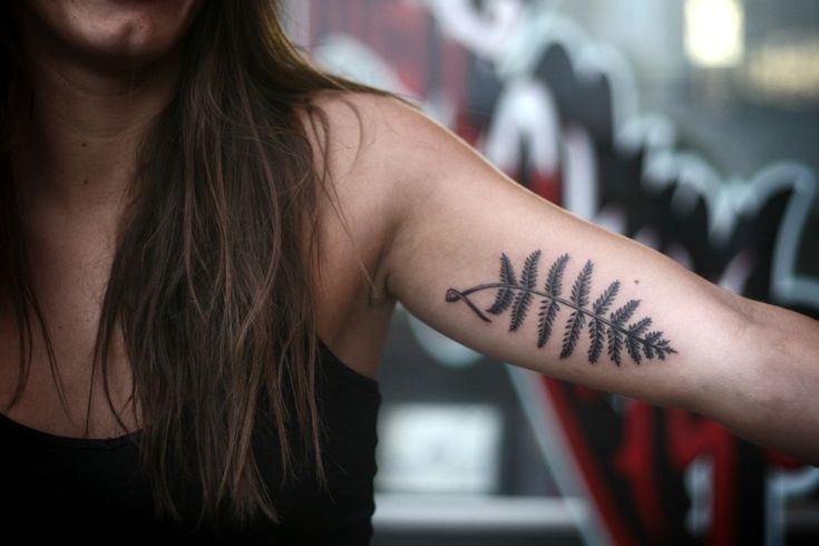 Alice Carrier | small and simple fern on the inner bicep.  i love...