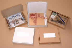 """100 x """"PIP"""" (LARGE LETTER SIZE) PIZZA STYLE CD MAILER (2xCD'S) WHITE OR BROWN"""
