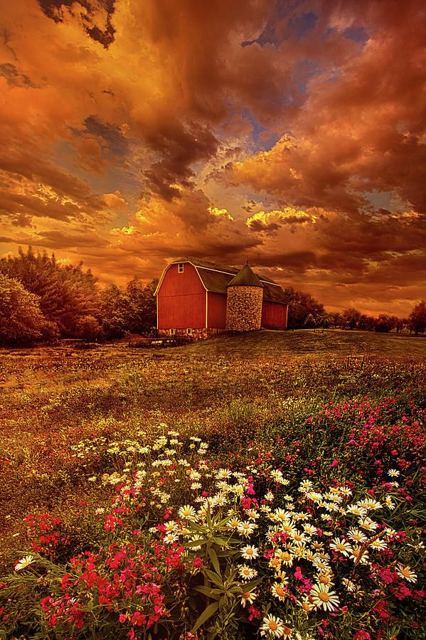In A Heartbeat Photograph by Phil Koch