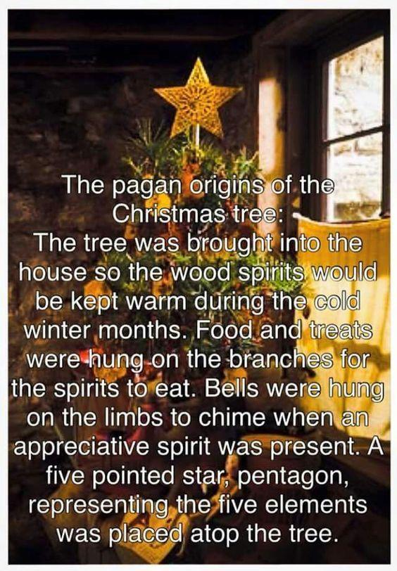 The Origin Of The Christmas Tree.Dumb Xmas Humor Christmas Pagan Christmas Yule Winter Solstice