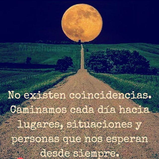 @buscadores •