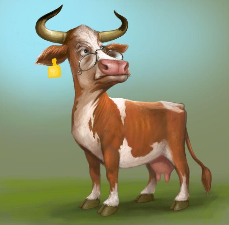 not too happy cow...