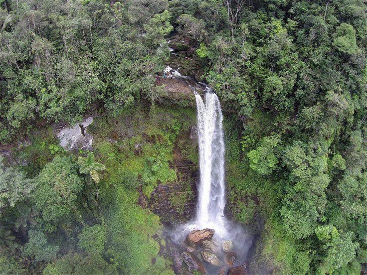 El recorrido para llegar a la cascada del Fin del Mundo es en medio de la selva. Tarda cerca de una hora y media.