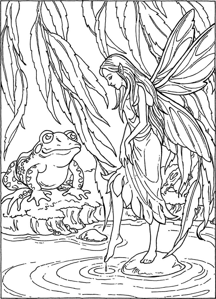 fairy and pond frog coloring page