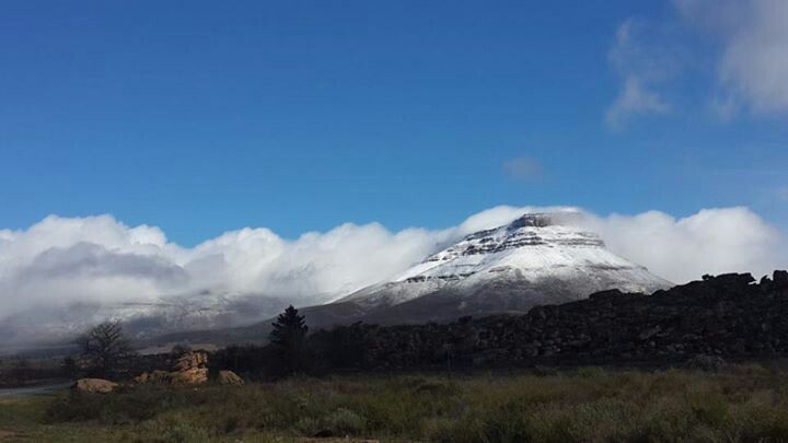 Cedarberg, Western Cape. Early Spring 2013. (Photo: D. Hardy)