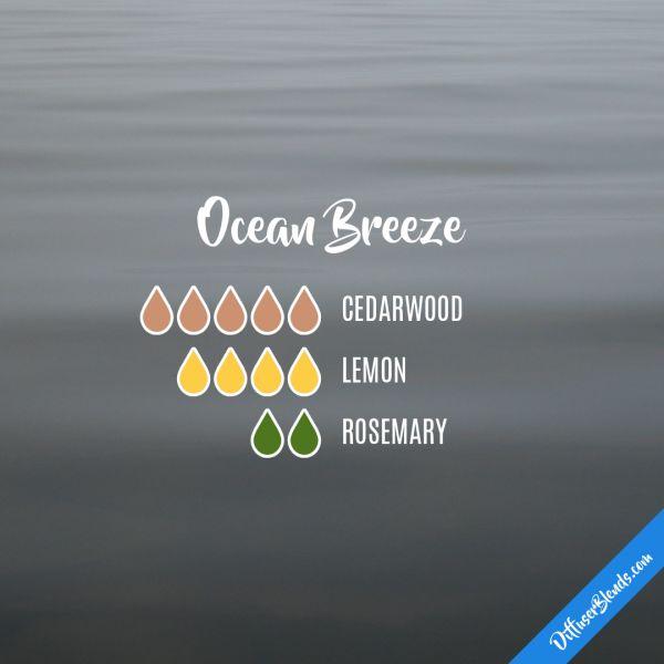 Ocean Breeze - Essential Oil Diffuser Blend