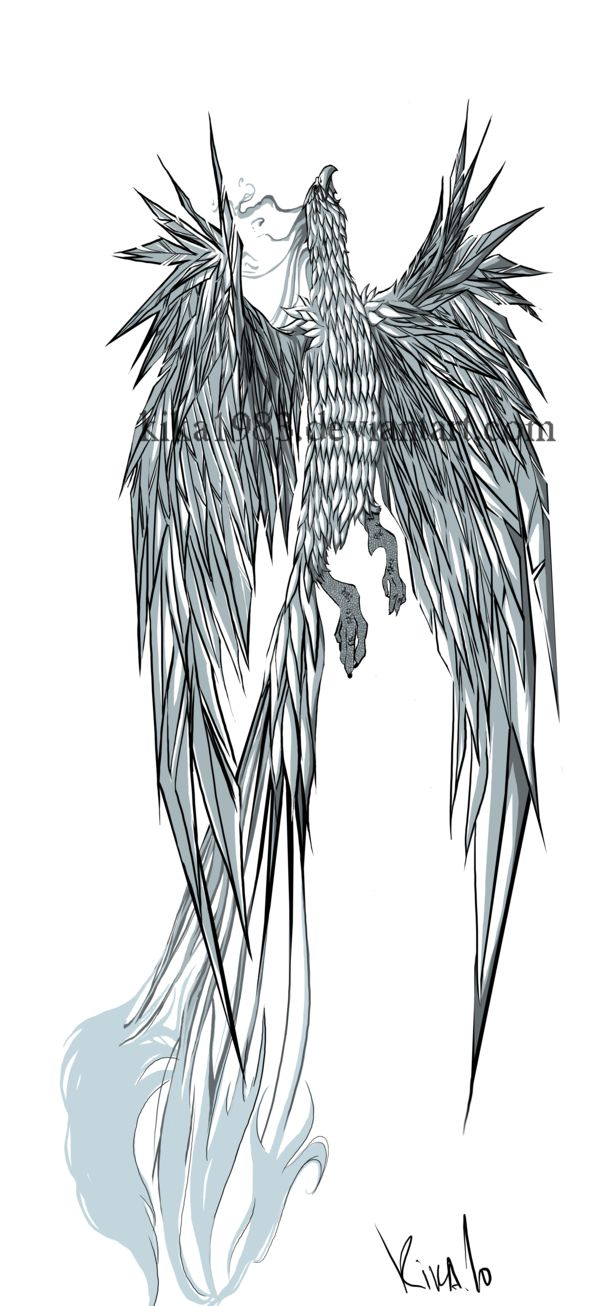 Another tattoo commissioned by: Kyle Konrat PAID Do not use,copy or reproduce!!! Previous Phoenix design of mine: and some other tattoo designs: For more check out my tattoo folder: If you want to ...