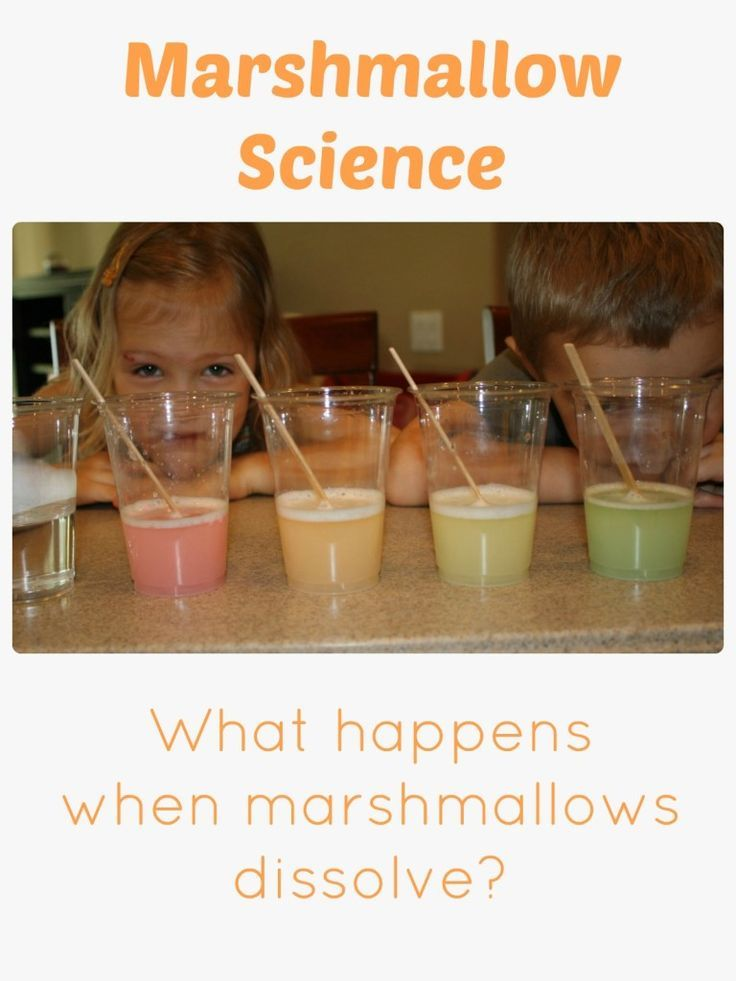 Marshmallow Science~Make your own rainbow with this fun marshmallow science experiment.