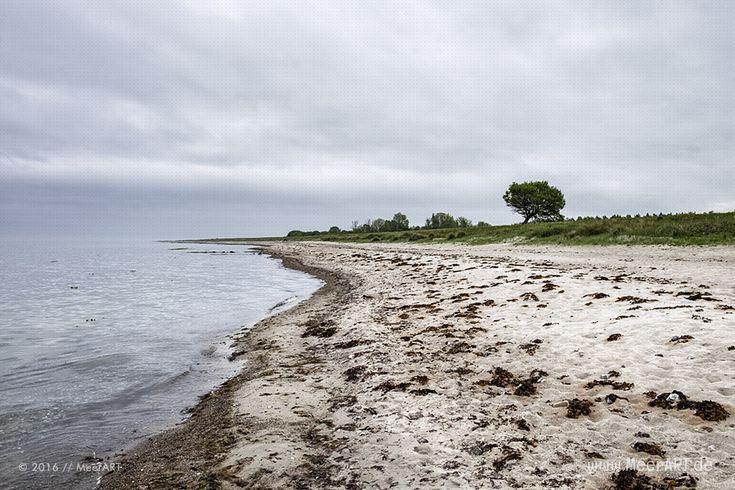 Die Ostseeküste von Kronsgaard bis Ohe-Maasholm // Foto: MeerART
