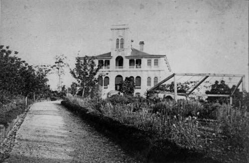 Old Mansions for Sale | Brynhyfryd Mansion Ipswich date unknown 2- State Library of Qld | Old ...