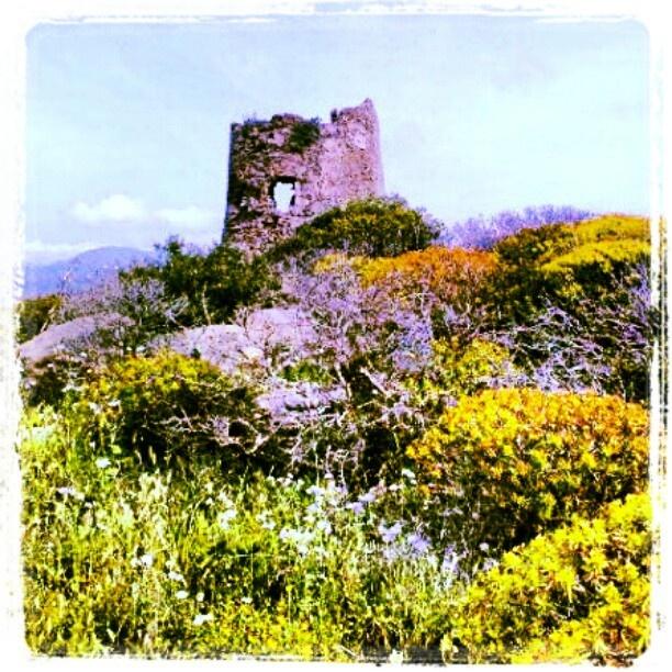 La Torre aragonese di Porto Giunco a #Villasimius. Si trova sul promontorio di Capo Carbonara, immersa nella macchia mediterranea, tra cisto, euforbia, ginestre e rosmarino.    #igersardegna www.sardegna.com